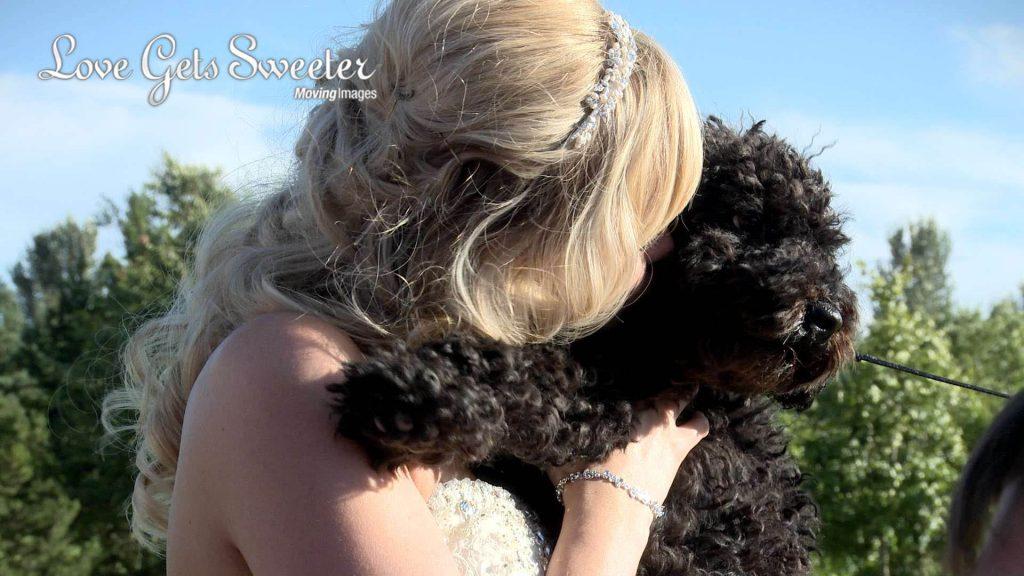 bride with cockapoo dog at wedding at Malkins Bank Golf Club wedding