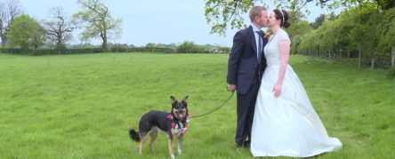 bride and groom kissing with their dog as a guest at wedding at sandhole oak barn