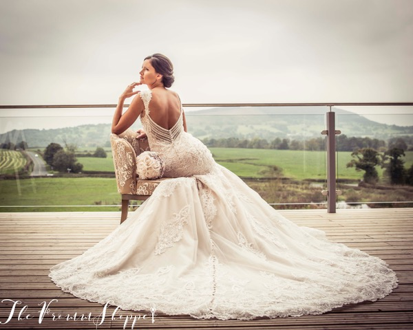 stunning back detail of a wedding dress with views of the hills at Bashall Barn taken by The Fromme Shoppe in Clitheroe