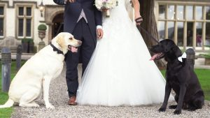 a shot of a bride and groom standing with their two dogs outside Mitton Hall in Clitheroe