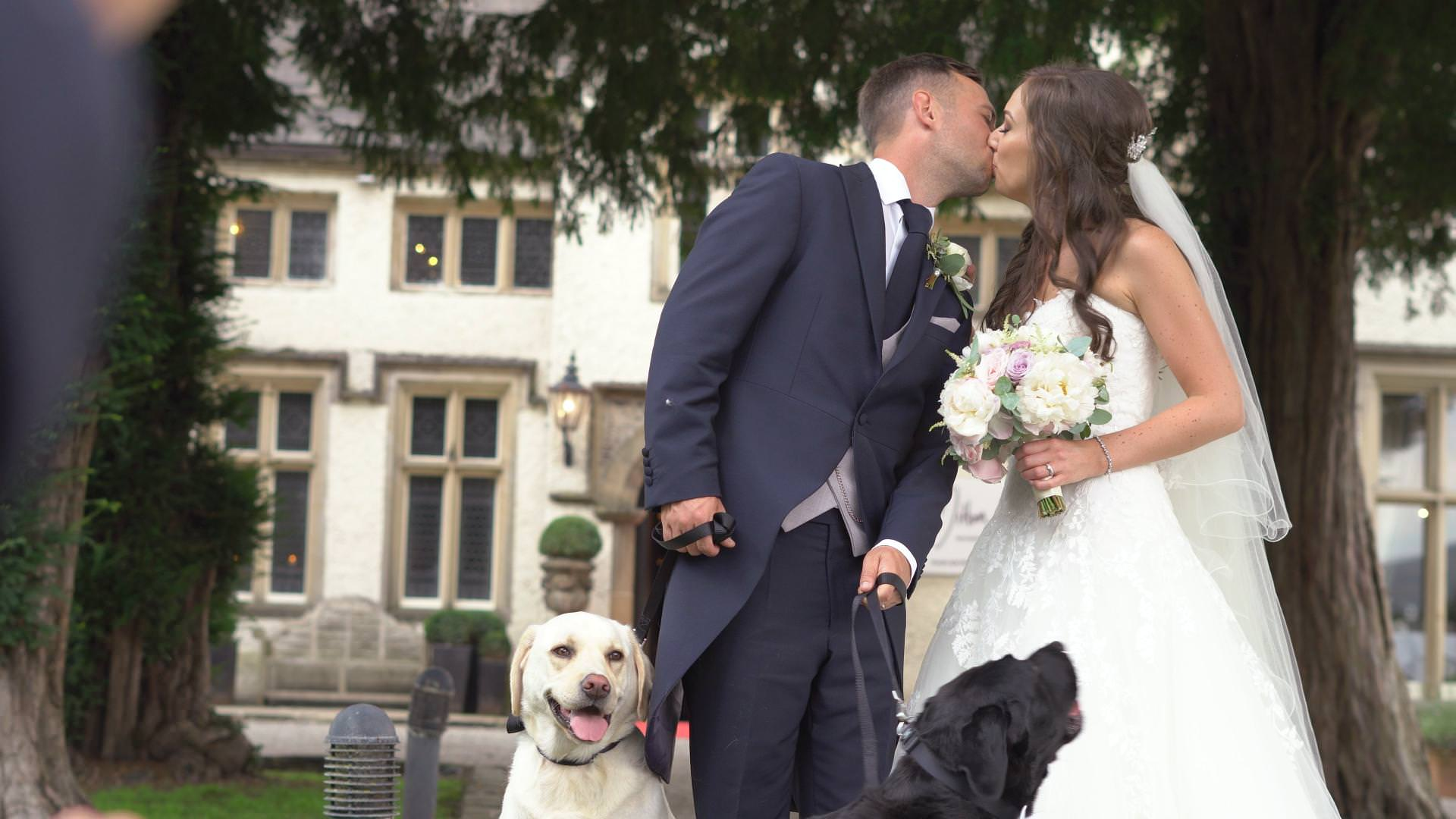 a bride and groom kiss for a photo outside Mitton Hall with their two Labradors