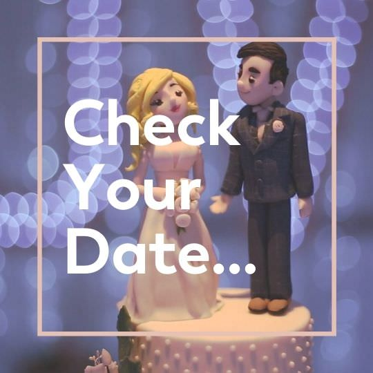 check wedding videographer date availability